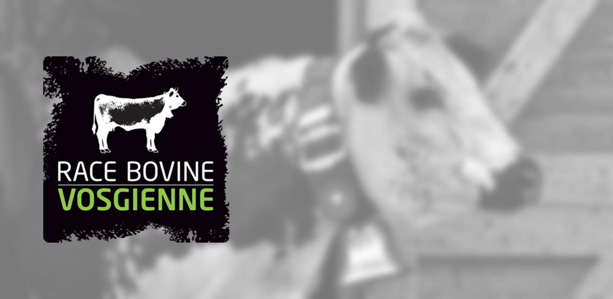 "Le label ""Race Bovine Vosgienne"""